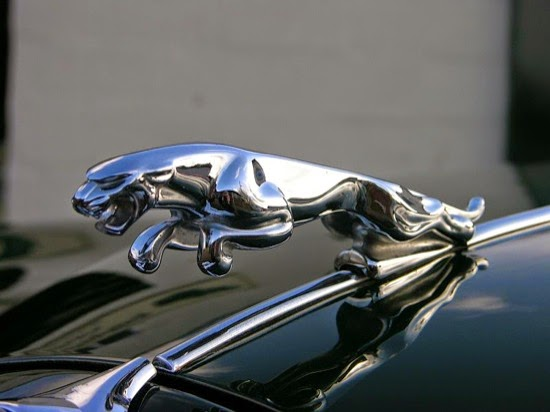 Emblema de Jaguar
