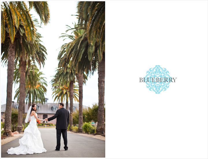 livermore palm event center vineyard beautiful gorgeous natural light wedding photography