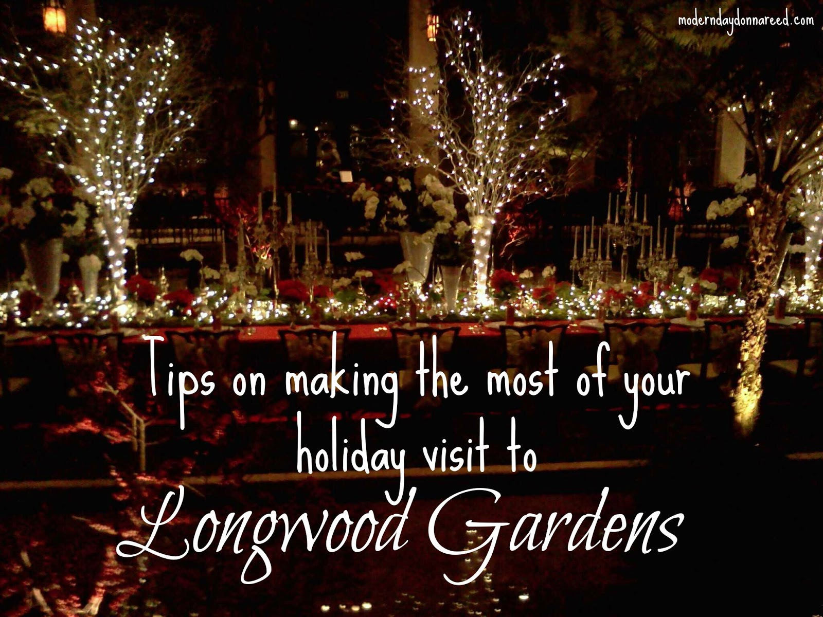 A Longwood Christmas 2012: How to Make the Most of Your Visit ...