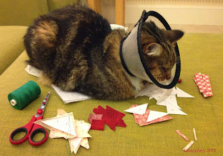 Cat wearing Elizabethan Collar, helping with patchwork