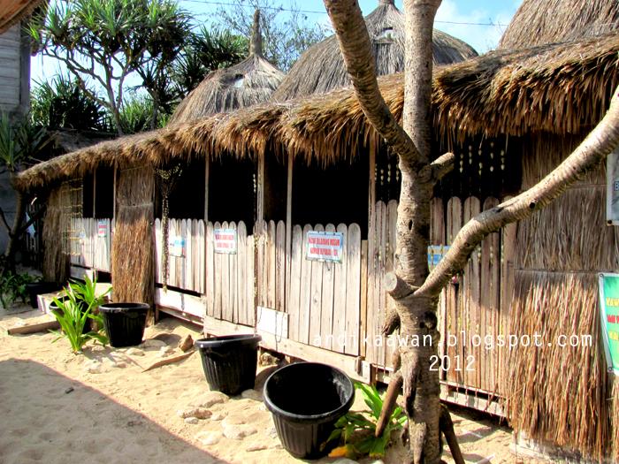 Selain Fasilitas Restoran Pantai Indrayanti Juga Dilengkapi Dengan Penginapan Tema Back To Nature Konsep Bangunan Yang Ditawarkan Oleh