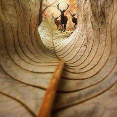 Tudo na vida é uma questão de perspetiva