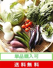 主婦目線でセレクト熊本県産旬のおいしい野菜セット[送料無料]ーひごベジ