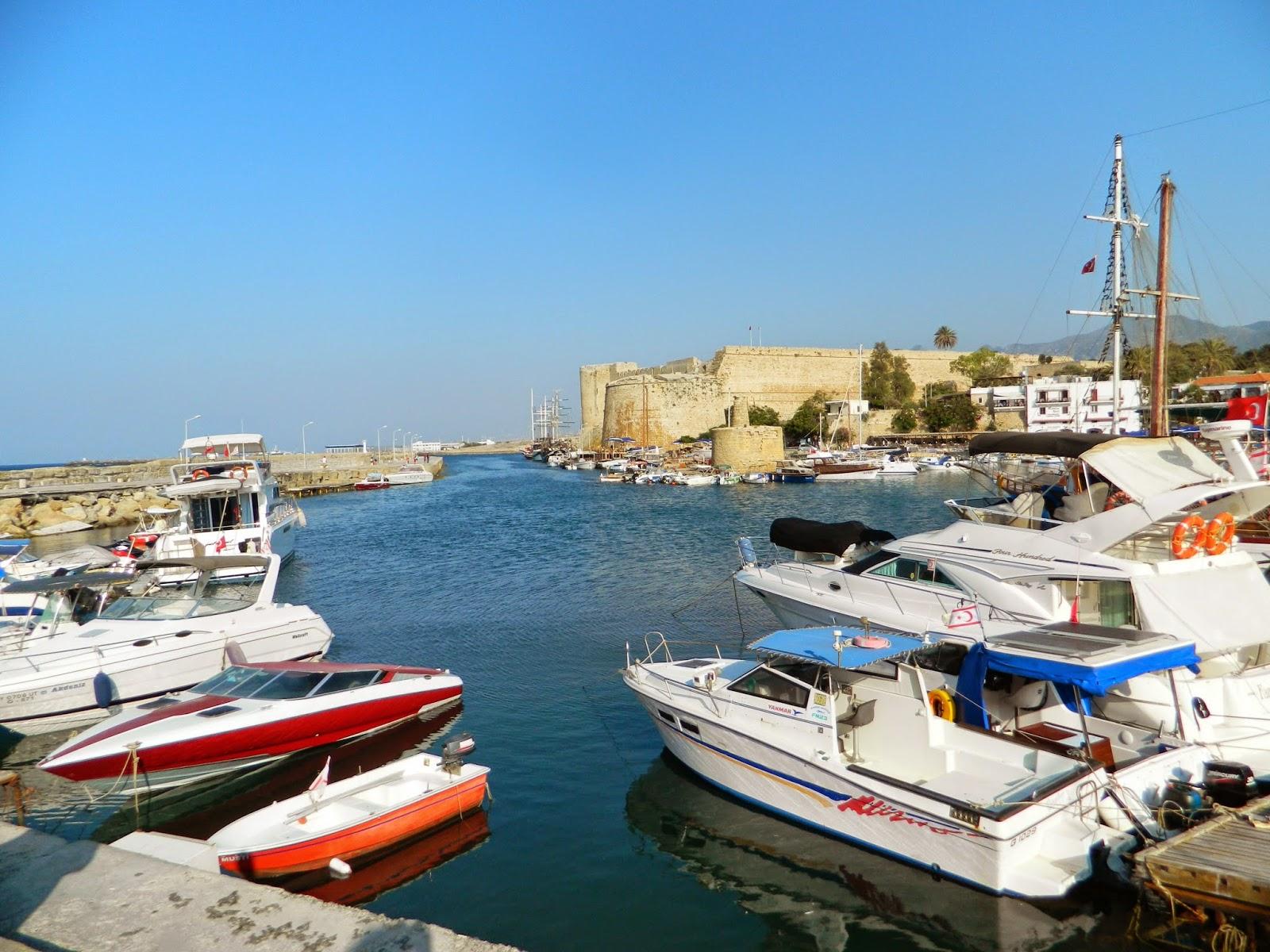 Bitta – Zeytinli Hellim Peynirli Kıbrıs Ekmeği