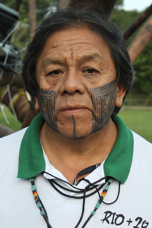 Mr. Marcos Terena