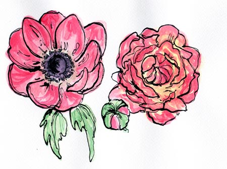 It Was A Nice Sunny Day Today Which Makes Change So I Little Inspired To Draw Some Flowers These Are Of My All Time Favourite