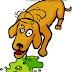 Penyebab, Gejala, Diagnosa dan Differensial Diagnosa Muntah/Vomitus Pada Hewan