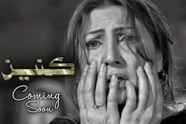Kaneez Episode 14 Online Drama 12th October 2014
