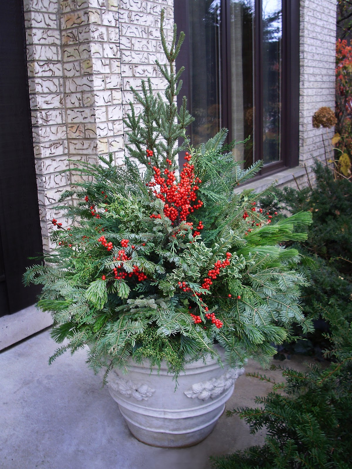 Picture below are some pictures of winter container gardens done by ...