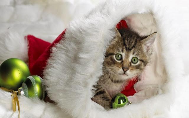 http://www.salvatorebaglieri.com/blog/swf/christmascard/index.html