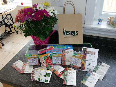 We went seed shopping on Saturday!