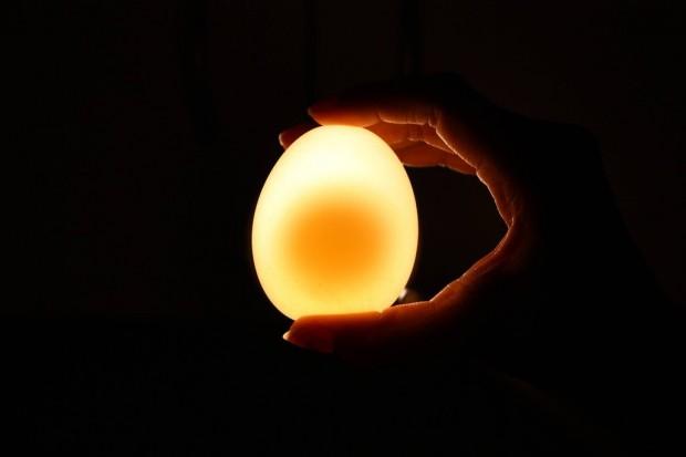 هل رأيت من قبل بيضة عارية - 12