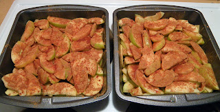 Two Baking Dishes of Apples and Cinnamon