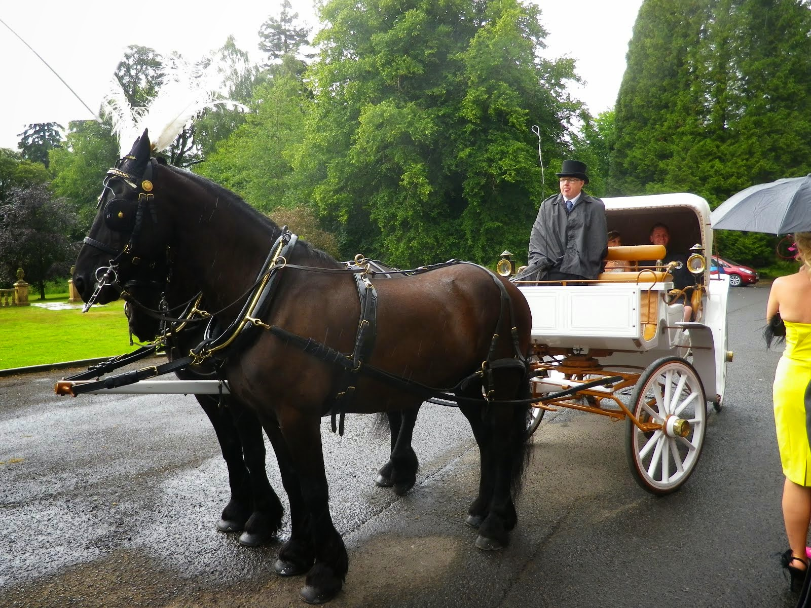 Horse-drawn carriage at Culcreuch Castle, Fintry, Stirlingshire
