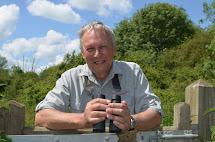 Jim Stevenson