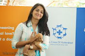 Anushka with Puppy at Blue Cross Pet Carnival Press meet-thumbnail-8