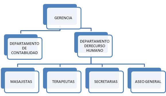 Sistemas de informacion gerencial organigrama de fresh - Que es un spa ...