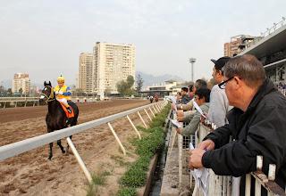 apuestas deportivas en caballos