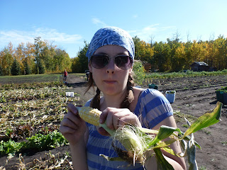 Lisa enjoys an ear of corn straight from the stalk