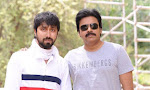 Pawan Kalyan Sardar Movie On Sets Photos-thumbnail