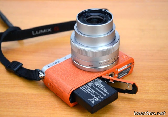 Panasonic Lumix DMC-GM1 Review - Features