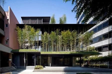 Templo Revestido con Plantas de Bambu en el Centro de Tokio, Soluciones Naturales para Viviendas
