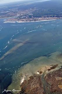 Photo aérienne de l'ile aux oiseaux du Bassin d'Arcachon