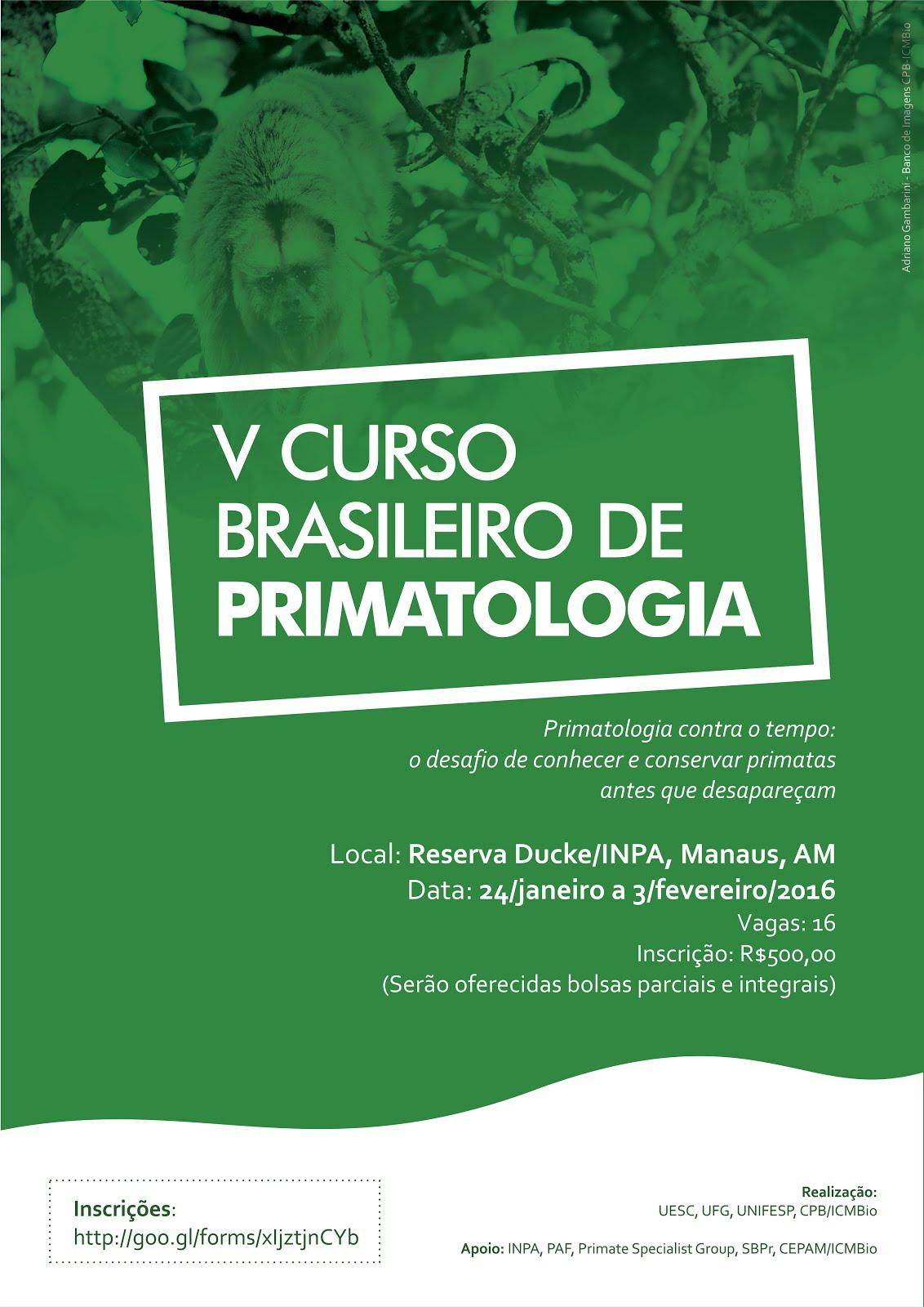 Bem-vindos ao Blog do V Curso Brasileiro de Primatologia de Campo - Amazonia