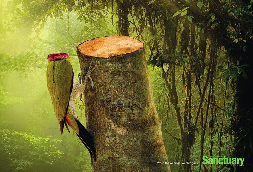 Shocking Effects Of Deforestation Exposed In Brutal Print Ads