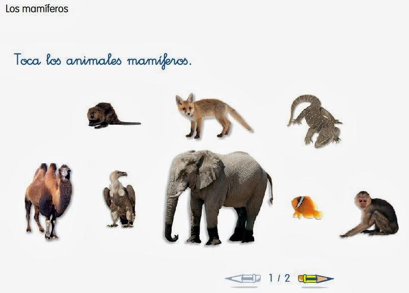 http://www.ceiploreto.es/sugerencias/cp.juan.de.la.cosa/1_2/cono/actividades/07/05/visor.html
