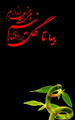 فارسی شاعری مع اردو ترجمہ