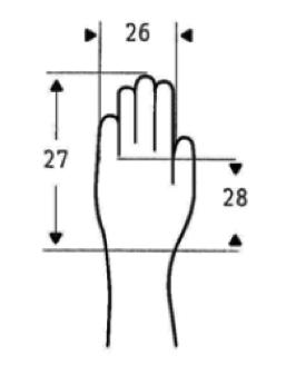 Tai marco te rico for Medidas antropometricas pdf