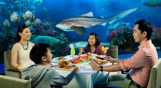 rws ocean restaurant underwater dining
