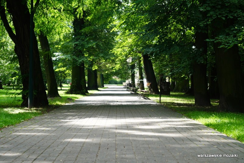 Warszawa Włochy ogród drzewa platan lipa pomnik przyrody