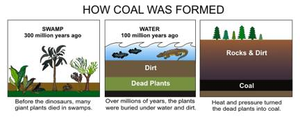 Formation of coal, oil and gas ~ Learning Geology