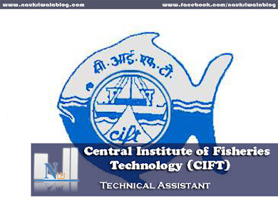 Technical Assistant Job 2015