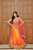 sri mukhi glam pix in half saree-thumbnail-1