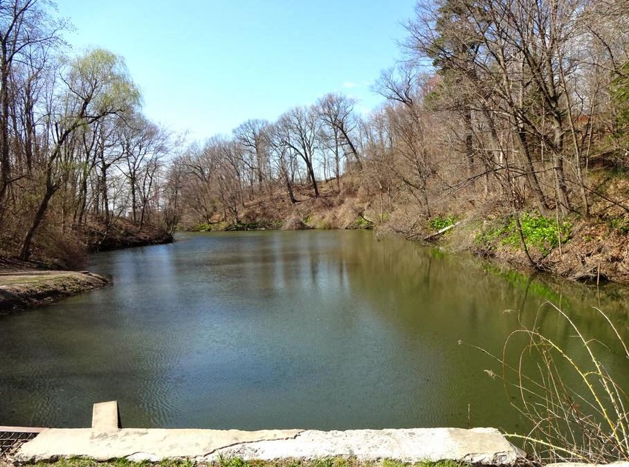 Cowhorn Creek