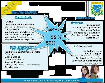 Universidad del Sureste de Mexico