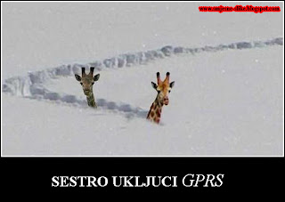 Snjeg, zirafe, gprs, izgubljeni, pronaci, pomoci