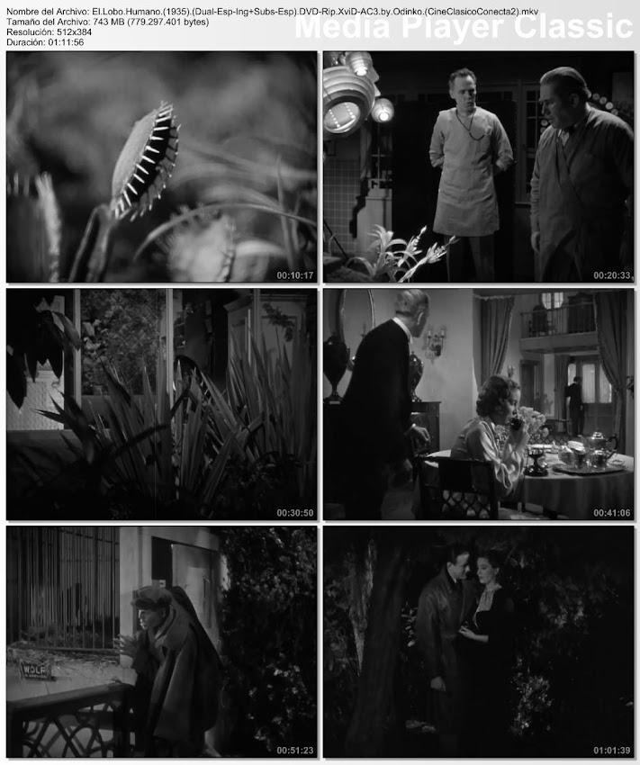 El lobo humano (AKA - El hombre lobo de Londres) | 1935 | Werewolf of London