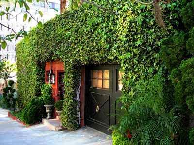 Jardines verticales muros verdes paredes vegetales for Plantas trepadoras para muros