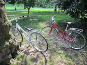 #5 Bikes Wallpaper