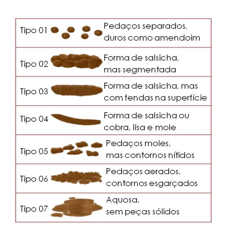 Biscoito de senha do Utiliser rar