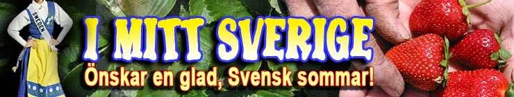I Mitt Sverige...