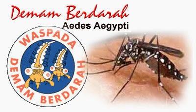http://manfaatnyasehat.blogspot.com/2014/05/gejala-demam-berdarah-penyebab-dan-cara.html