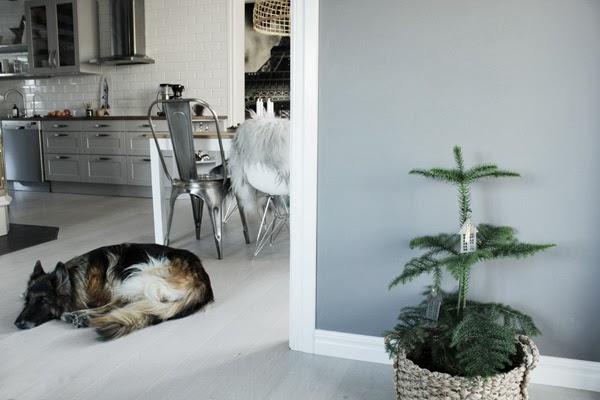 rumsgran, advent 2013, matplats, grått kök, vitt golv, tolix stol, fårskinn, julen 2013, schäfer, vitt kakel, stålstolar,