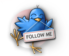 Follow Me, Follow Friday, Blog Hop, Facebook, Google Plus & Twitter Friends