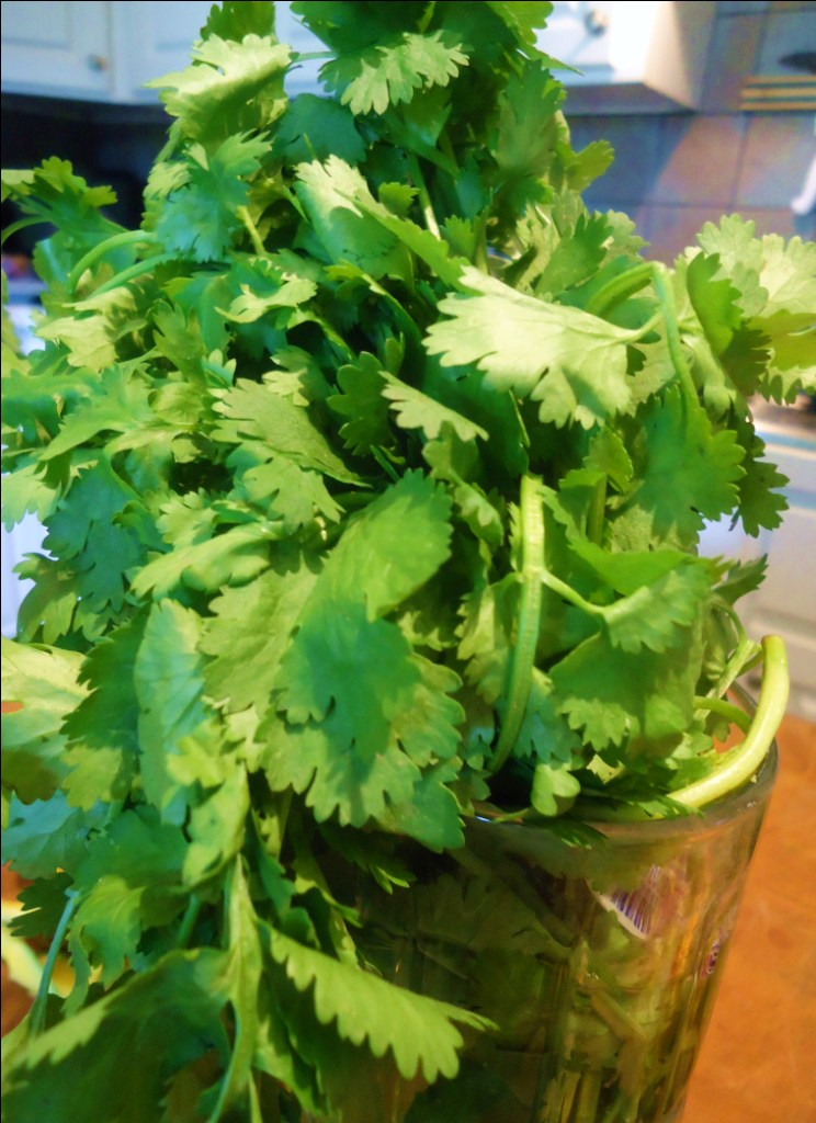 how to make fresh salsa without cilantro