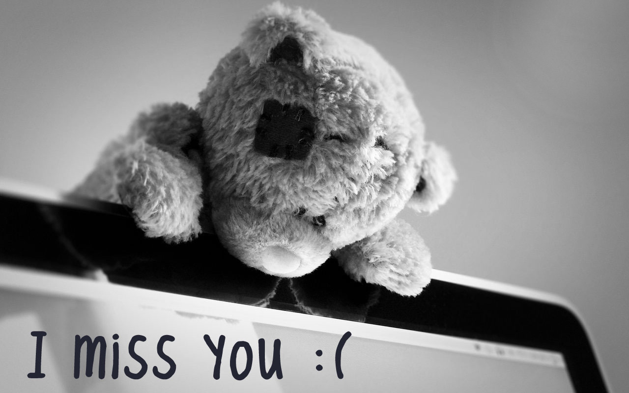 I Miss You with Teddy HD Wallpapers